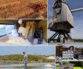 Programmez une projection du film «Farine, sel, eau et savoir-faire»