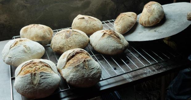 Atelier de fabrication de pain au levain