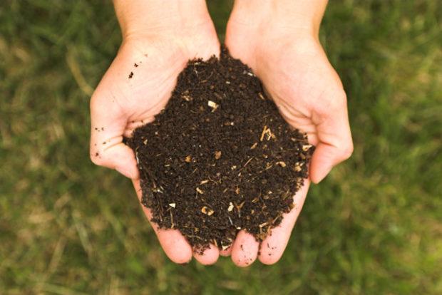 Composter sans se planter ! Initiation à la pratique du compostage et partage d'expériences