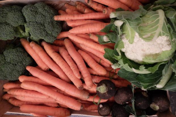 Conservation de légumes locaux et de saison en tartinades et lacto-fermentation