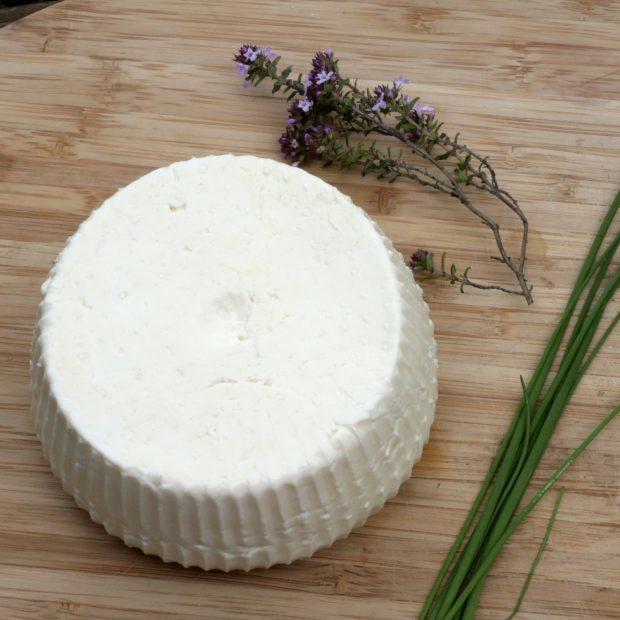 Atelier de valorisation de lait bio en fromages type ricotta et à pâte dure