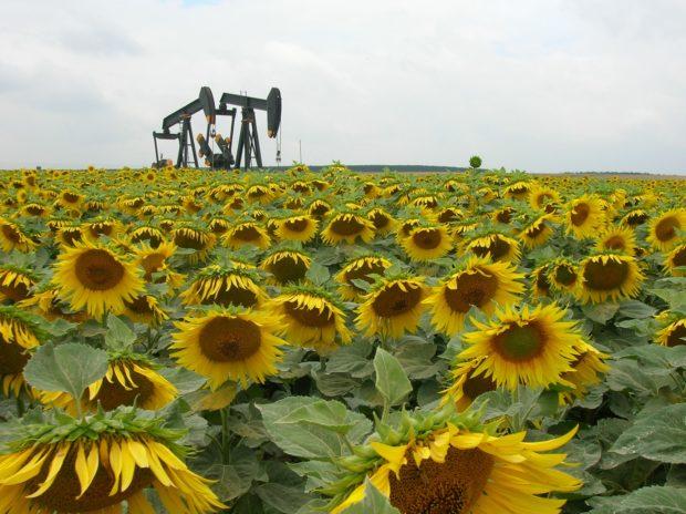 Le futur du pétrole en question !